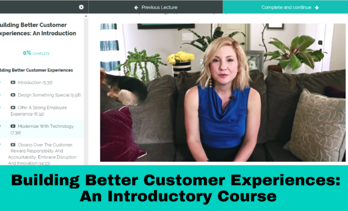 Building Better Customer Experiences: An Introductory Course